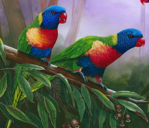(CreativeWork) LORIKEETS - Limited Edition Giclee Print Ed. 2 of 100 by Debra Dickson. Print. Shop online at Bluethumb.