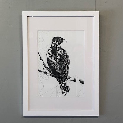 (CreativeWork) Wedge Tail - Framed, ready to hang  by Jahne Meyer. Drawings. Shop online at Bluethumb.