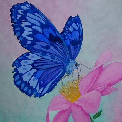 (CreativeWork) Butterfly on Flower by Julie-Anne Gatehouse. Acrylic Paint. Shop online at Bluethumb.