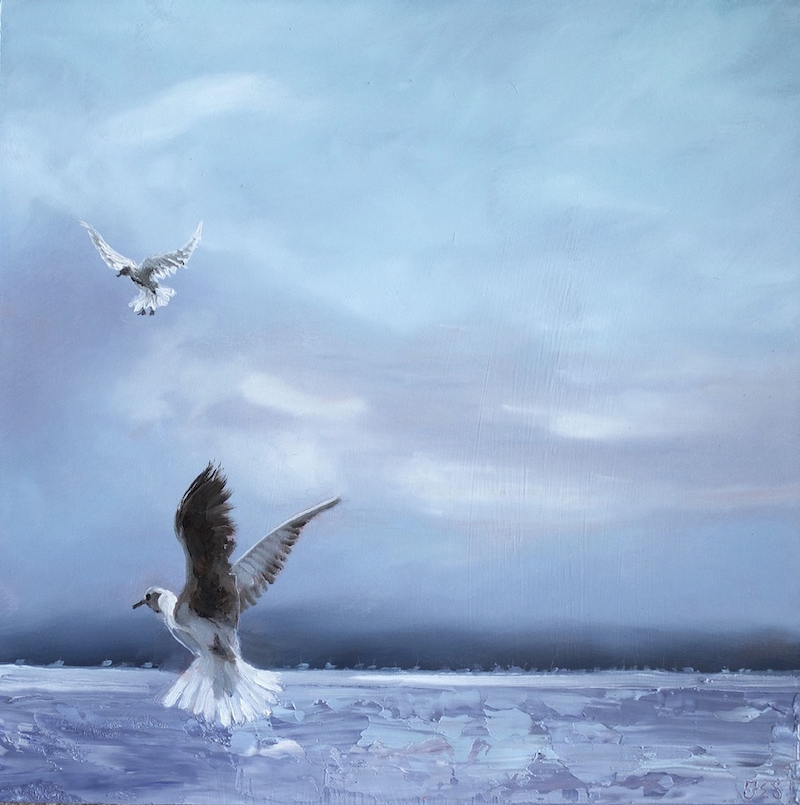 (CreativeWork) Jonathan Livingston seagull on manoeuvres, Pittwater by fiona smith. Oil Paint. Shop online at Bluethumb.