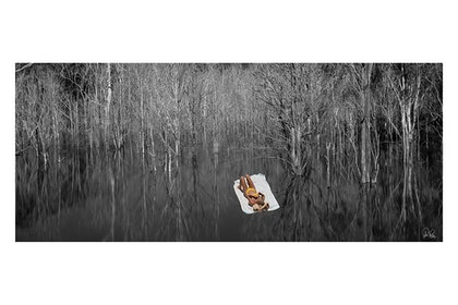 (CreativeWork) P 068  Afloat in the wilderness   by Peter Henning. photograph. Shop online at Bluethumb.