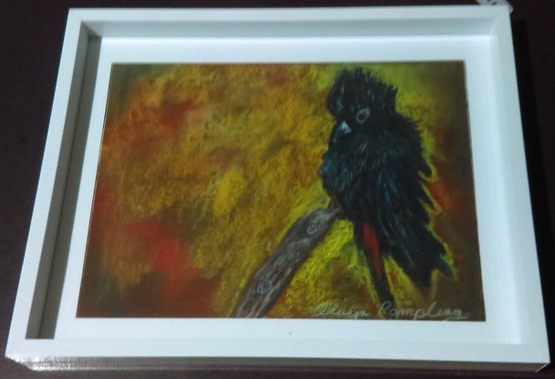 (CreativeWork) Redtail Black Cockatoo by Olwyn Pampling. Other Media. Shop online at Bluethumb.