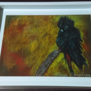 (CreativeWork) Redtail Black Cockatoo by Olwyn Pampling. other-media. Shop online at Bluethumb.