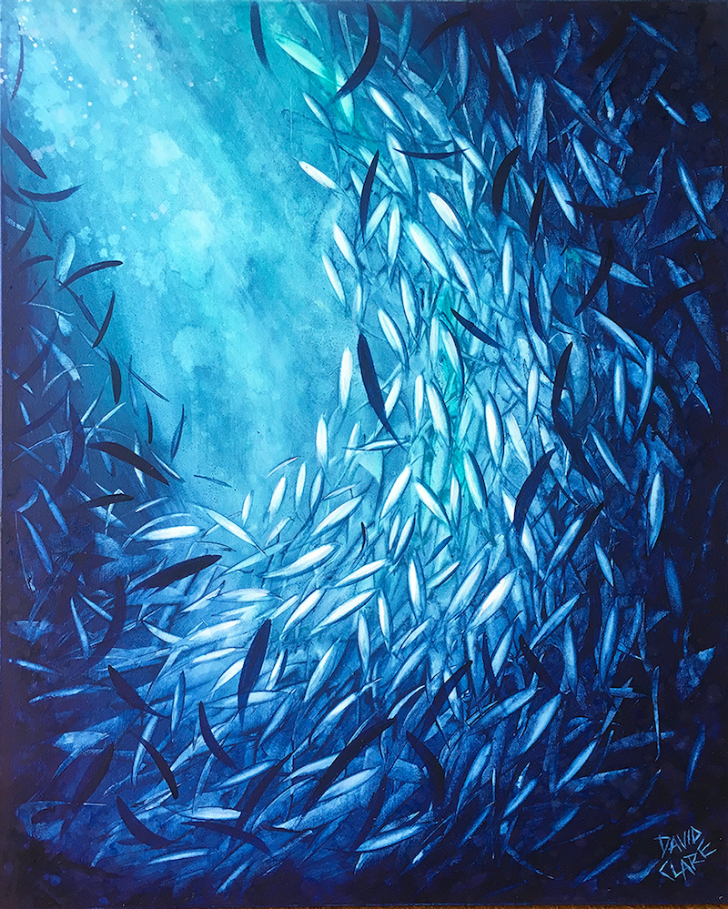 (CreativeWork) Fish Highlight 2 by David Clare. Oil Paint. Shop online at Bluethumb.