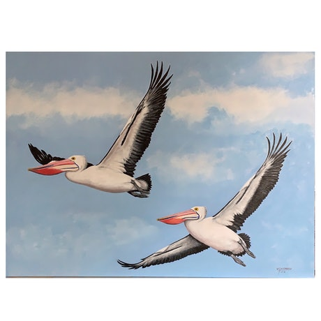 (CreativeWork) Pelicans over Wivenhoe  by Wendy A. Greenwood. Acrylic Paint. Shop online at Bluethumb.