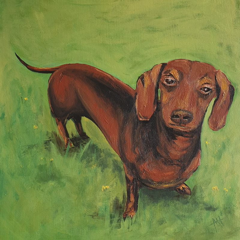 (CreativeWork) Dachshund - Commission  by Angela Hawkey. Acrylic Paint. Shop online at Bluethumb.