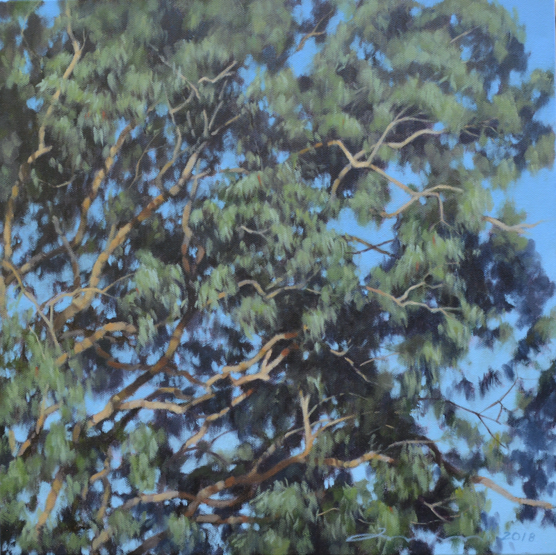(CreativeWork) Bruce Rd Angophora Crown XVI by Stephen Travers. Oil Paint. Shop online at Bluethumb.