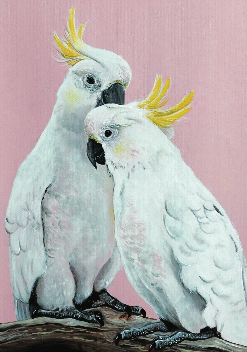 (CreativeWork) Sulphur Cockatoo Lovers A3 Limited Edition Print Ed. 3 of 100 by HEYLIE MORRIS. Print. Shop online at Bluethumb.