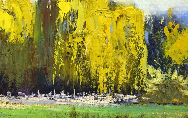 (CreativeWork) light on Willows by Graham Gercken. Oil Paint. Shop online at Bluethumb.