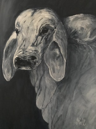 (CreativeWork) A Load of Bull by Joy Holt. Acrylic Paint. Shop online at Bluethumb.