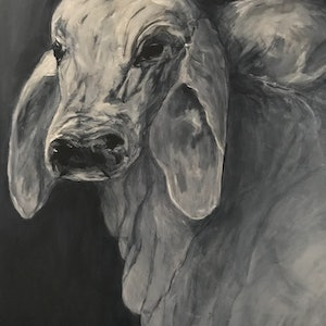 (CreativeWork) A Load of Bull by Joy Holt. arcylic-painting. Shop online at Bluethumb.