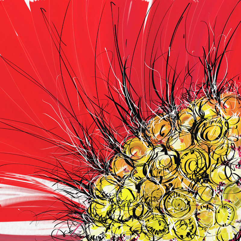 (CreativeWork) Sun flower on red hot day by Gino Ciancio. Other Media. Shop online at Bluethumb.