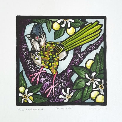 (CreativeWork) Limited edition Hand coloured linoprint - 'The Whipbird'  by Sophie Sorella. Other Media. Shop online at Bluethumb.