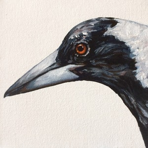(CreativeWork) Magpie by april white. arcylic-painting. Shop online at Bluethumb.