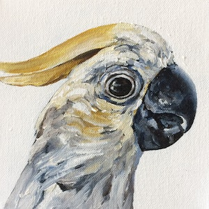 (CreativeWork) Cockatoo by april white. arcylic-painting. Shop online at Bluethumb.
