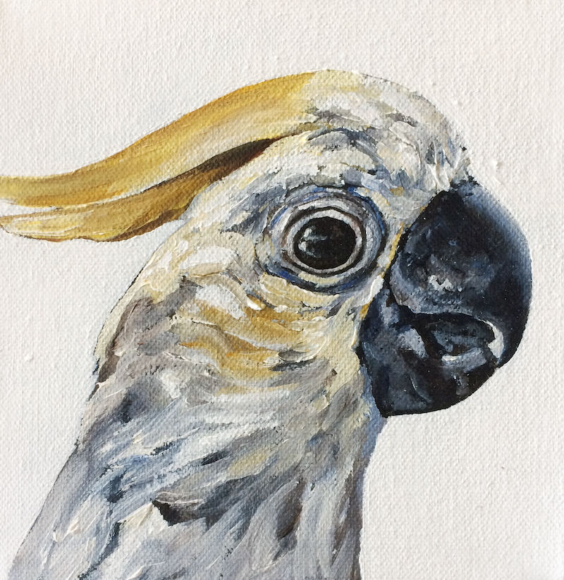 (CreativeWork) Cockatoo by april white. Acrylic Paint. Shop online at Bluethumb.