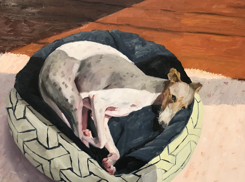 (CreativeWork) Italian Greyhound - Commission Example by James Needham. Oil Paint. Shop online at Bluethumb.