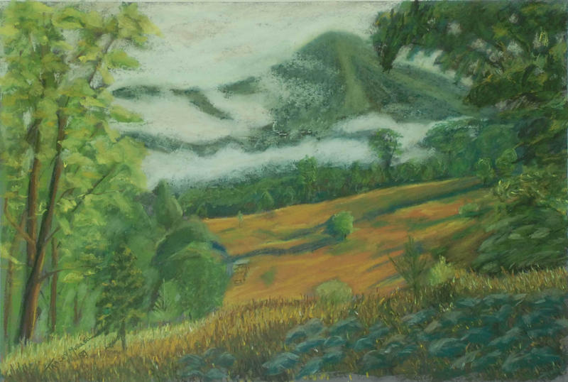 (CreativeWork) Looking Towards Misty Ridge by Tracey Murrell. Drawings. Shop online at Bluethumb.