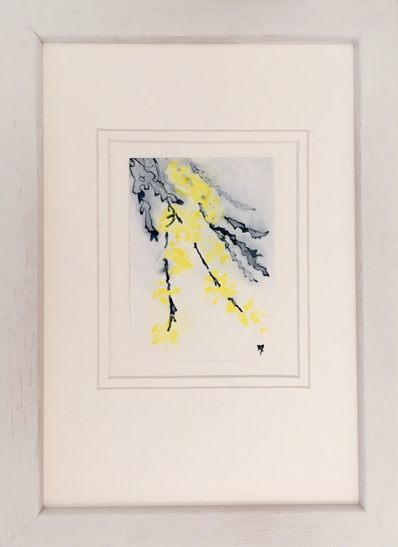 (CreativeWork) Studio View - ACEO Wattle ii - Miniature by Kylie Fogarty. Drawings. Shop online at Bluethumb.
