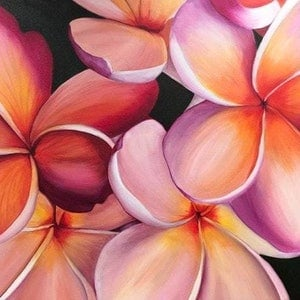 (CreativeWork) Tropical Blush - Original by Hayley Kruger. arcylic-painting. Shop online at Bluethumb.