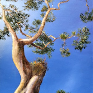 (CreativeWork) Australian Eucalyptus by Sergei Londar. oil-painting. Shop online at Bluethumb.