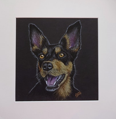 (CreativeWork) BLACK & TAN KELPIE by Linda Joyce. Drawings. Shop online at Bluethumb.
