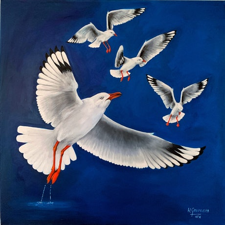 (CreativeWork) Silver Gulls over Wivenhoe by Wendy A. Greenwood. Oil Paint. Shop online at Bluethumb.