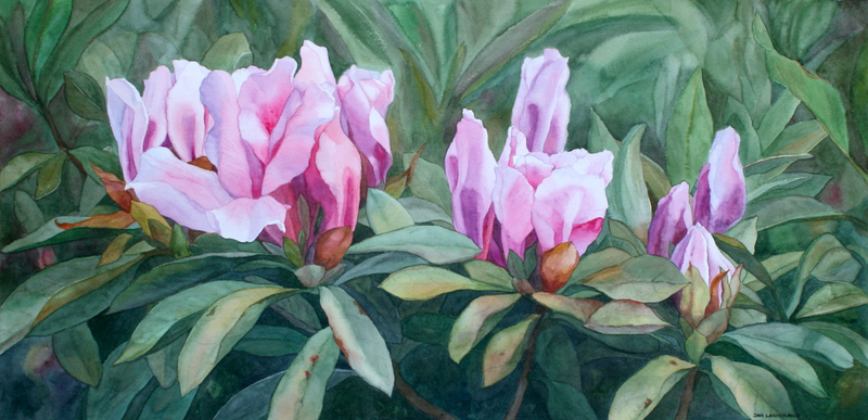 (CreativeWork) Blossoming Trio by JAN LAWNIKANIS. Watercolour Paint. Shop online at Bluethumb.