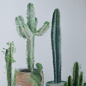 (CreativeWork) Cacti Corner by JAN LAWNIKANIS. watercolour. Shop online at Bluethumb.
