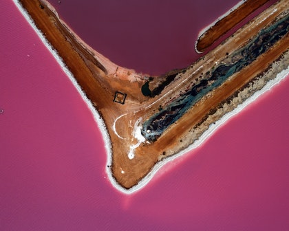 (CreativeWork) Pink Lake series 01 by Craig Hammersley. photograph. Shop online at Bluethumb.