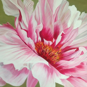 (CreativeWork) Pink Peony by Sharon Lagden. arcylic-painting. Shop online at Bluethumb.