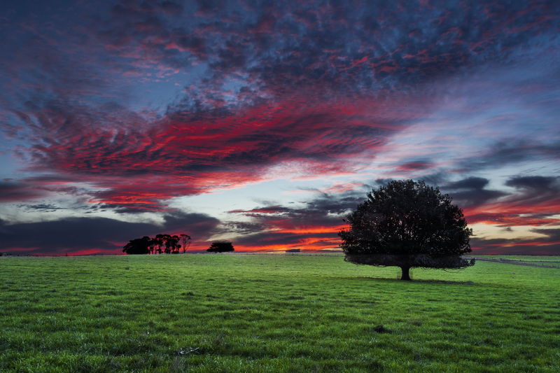 (CreativeWork) South Gippsland twilight by Piers Buxton. photograph. Shop online at Bluethumb.