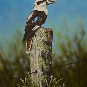 (CreativeWork) Laughing Kookaburra on fence post by Julie Sparks. arcylic-painting. Shop online at Bluethumb.