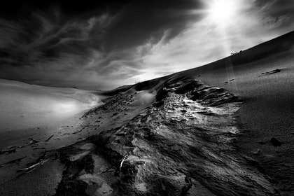 (CreativeWork) Darby Beach dune, Wilsons Promontory by Piers Buxton. photograph. Shop online at Bluethumb.