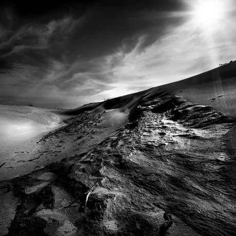 (CreativeWork) Darby Beach dune, Wilsons Promontory Ed. 1 of 4 by Piers Buxton. Photograph. Shop online at Bluethumb.