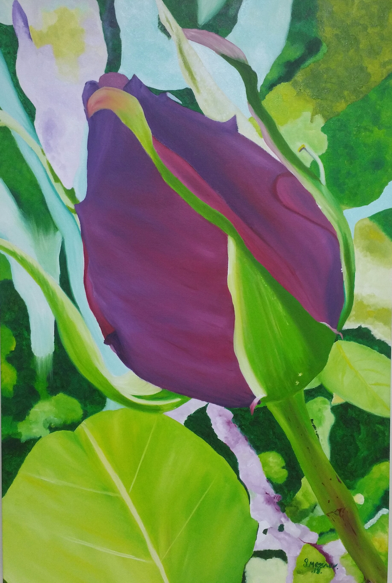 (CreativeWork) ROSEBUD by Sandra Messner. oil-painting. Shop online at Bluethumb.