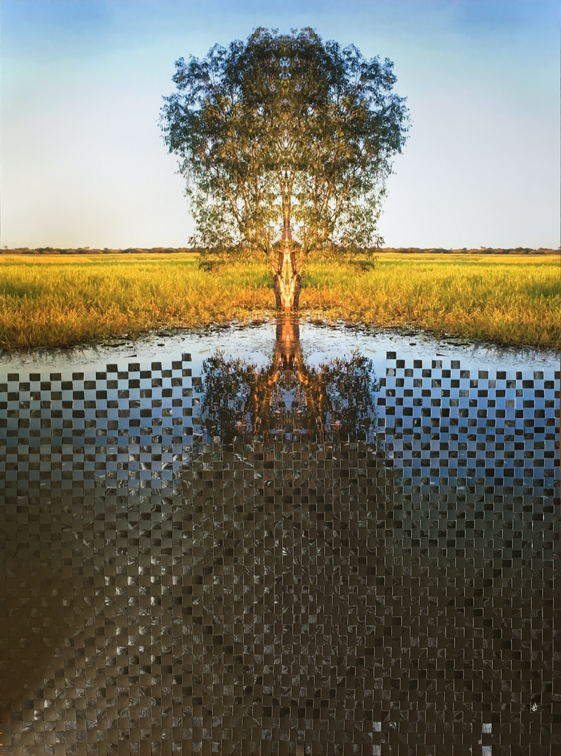 (CreativeWork) Woven family tree still waters - woven photography Australian landscape by Jennifer Bell. other-media. Shop online at Bluethumb.