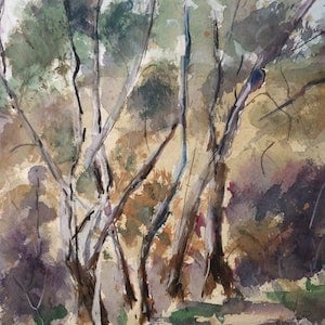 (CreativeWork) On a bush walk Pyalong (watercolour on  watercolour paper) matted by Margaret Morgan (Watkins). watercolour. Shop online at Bluethumb.