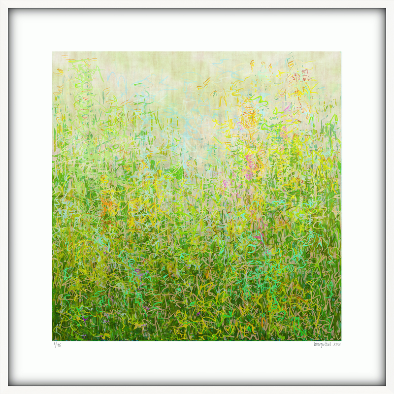 (CreativeWork) 'Summer Garden'  87cm squ framed in shadow box frame, 2 week framing time needed. Ed. 4 of 25 by George Hall. print. Shop online at Bluethumb.