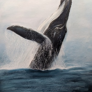 (CreativeWork) Humpback Happiness Ed. 1 of 15 by Deb Farrimond. print. Shop online at Bluethumb.