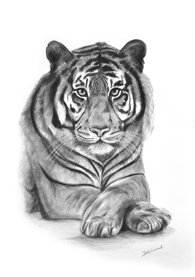 "(CreativeWork) Majestic ""Original"" by Deb Farrimond. drawing. Shop online at Bluethumb."