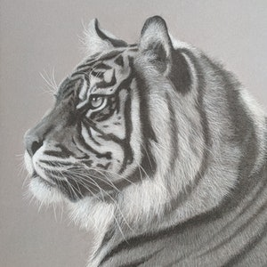 (CreativeWork) Endangered Prince Ed. 1 of 15 by Deb Farrimond. print. Shop online at Bluethumb.
