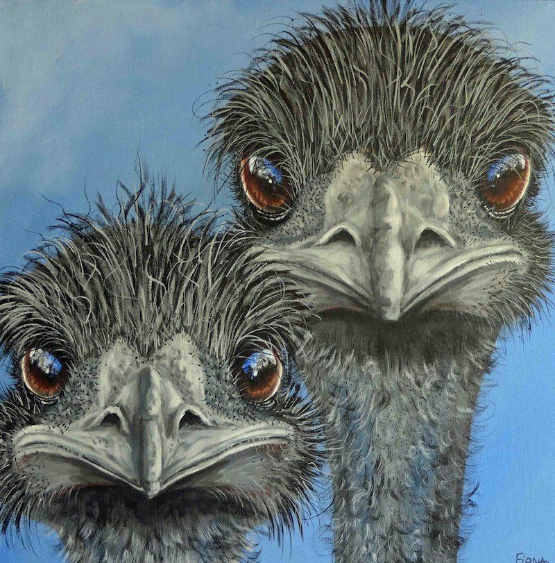 (CreativeWork) Ralph & His Brother From Another Mother  by Fiona Groom. arcylic-painting. Shop online at Bluethumb.