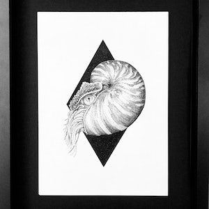 (CreativeWork) Indifference by Jess Black. drawing. Shop online at Bluethumb.