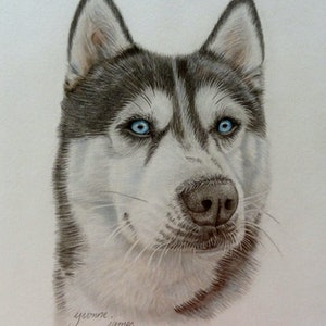 (CreativeWork) Husky by Evelyn James. mixed-media. Shop online at Bluethumb.