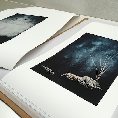 (CreativeWork) In Flux #1 Ed. 5 of 50 by Mat Hughes. Photograph. Shop online at Bluethumb.