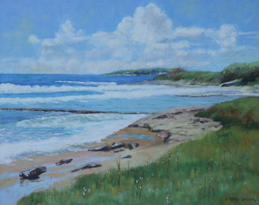 (CreativeWork) Shelly Beach Cronulla by Craig Taylor. Oil Paint. Shop online at Bluethumb.