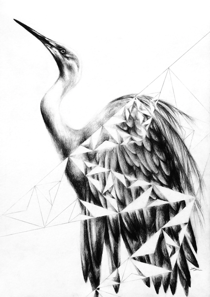 (CreativeWork) Egret Geometry - Framed, ready to hang  by Jahne Meyer. drawing. Shop online at Bluethumb.
