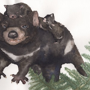 (CreativeWork) Tasmanian Devil and Joeys by Olivia Kate Biasin. watercolour. Shop online at Bluethumb.
