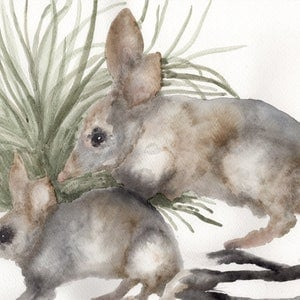 (CreativeWork) Bilby and Joey by Olivia Kate Biasin. watercolour. Shop online at Bluethumb.